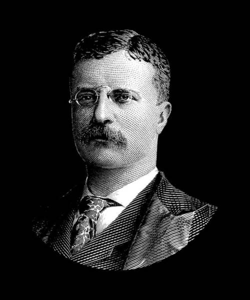 Wall Art - Digital Art - Young Theodore Roosevelt Graphic by War Is Hell Store