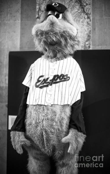 Photograph - Youppi In Montreal by John Rizzuto