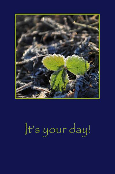 Photograph - Your Day by Randi Grace Nilsberg