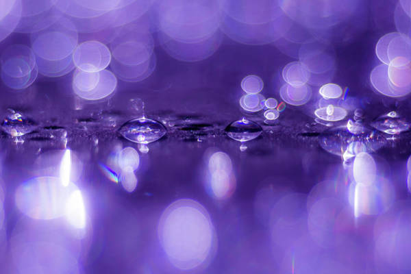 Photograph - Your Sparkle3 by Wolfgang Stocker