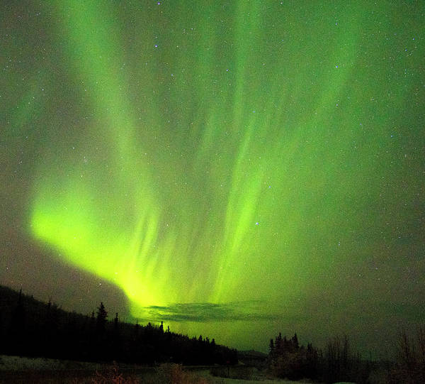 Photograph - Yukon Northern Lights 1 by Phyllis Spoor