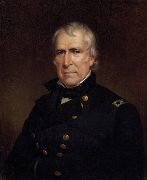 Wall Art - Painting - Zachary Taylor - Old Rough And Ready by War Is Hell Store