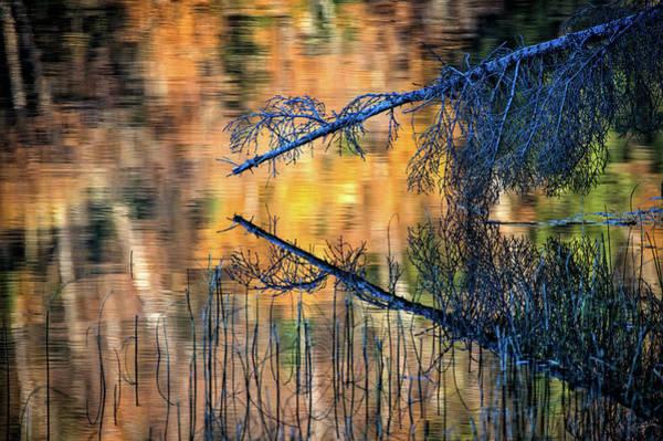 Photograph - Zaffre Autumn by Doug Gibbons