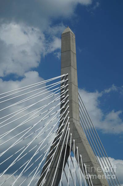 Zori Minkova - Zakim Bridge in Boston