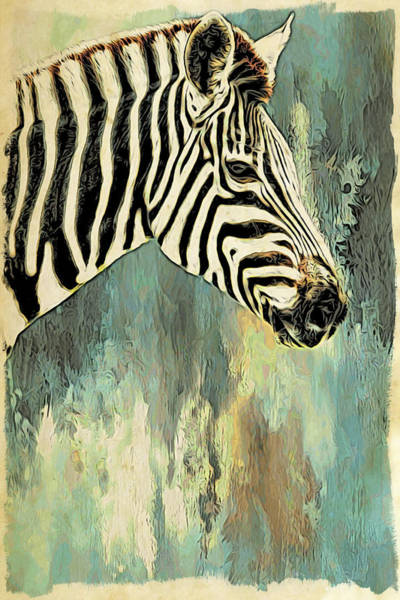 Photograph - Zebra Abstracts Too by Alice Gipson