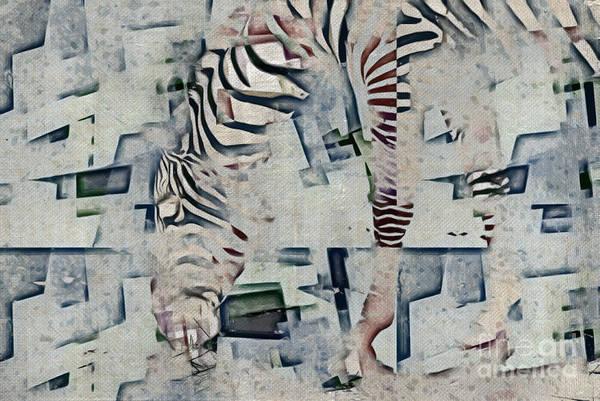 Wall Art - Photograph - Zebra Art - 52spt by Variance Collections