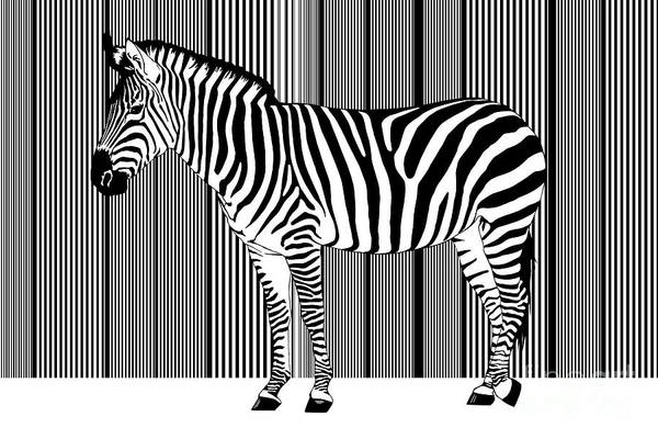 Barcode Digital Art - Zebra Barcode by Monika Juengling