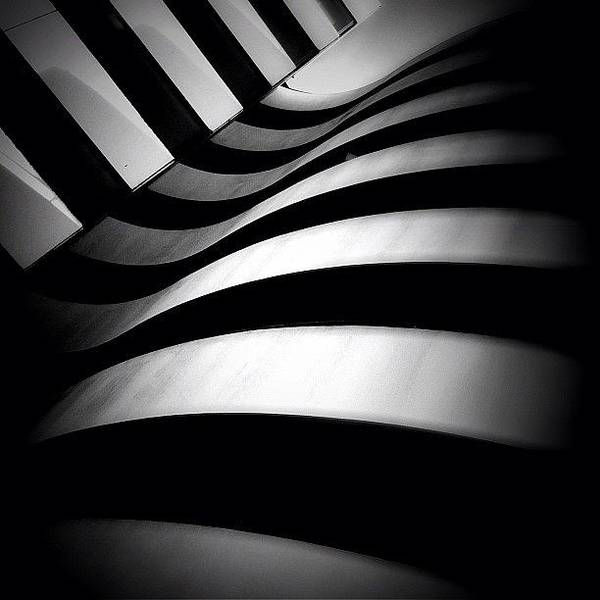 Blackandwhite Wall Art - Photograph - Zebra City - Concrete Jungle by Robbert Ter Weijden