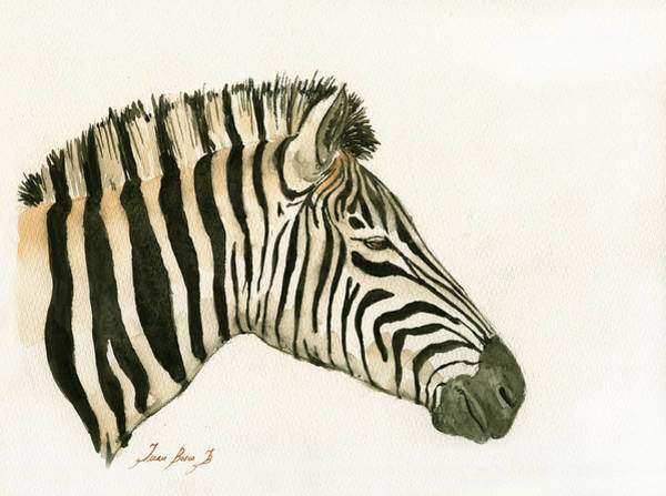 Wall Art - Painting - Zebra Head Study Painting by Juan  Bosco