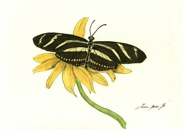 Zebra Painting - Zebra Longwing Butterfly by Juan Bosco