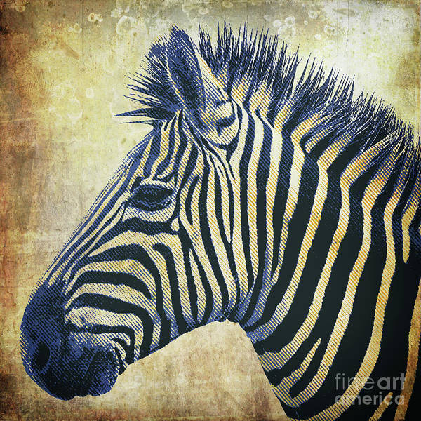 Mixed Media - Zebra Portrait Popart by Angela Doelling AD DESIGN Photo and PhotoArt