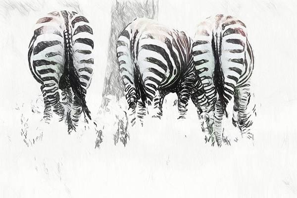 Photograph - Zebra Rears by Alice Gipson