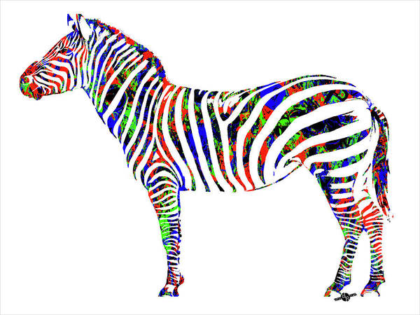 Painting - Zebra Study 2 by Tony Rubino