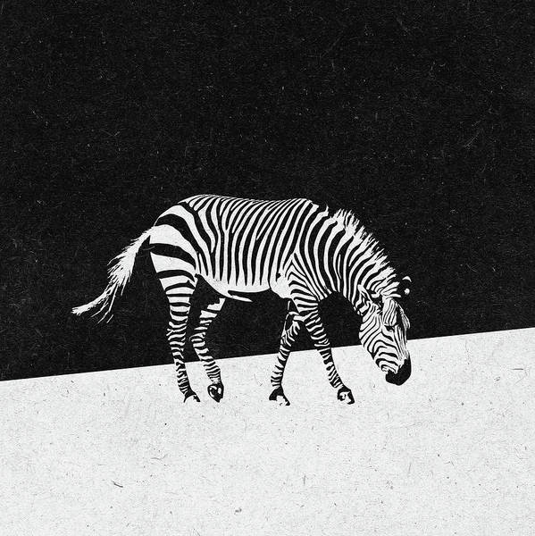 Wall Art - Digital Art - Zebra by Zoltan Toth