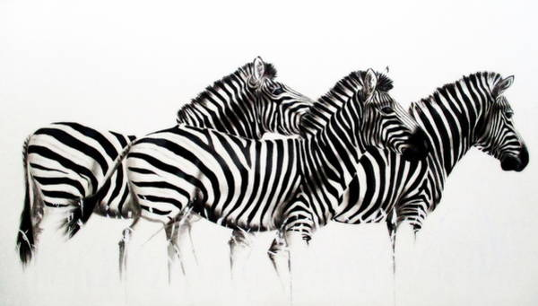 Painting - Zebras - Black And White by Tracey Armstrong