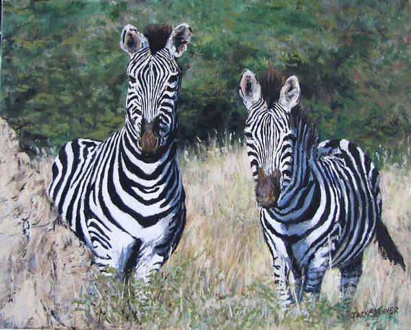 Wall Art - Painting - Zebras In South Africa by Jack Skinner