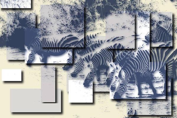 Wall Art - Photograph - Zebras by Joe Hamilton