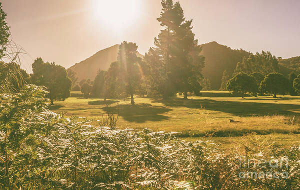 Autumn Scenes Photograph - Zeehan Afternoon Meadows by Jorgo Photography - Wall Art Gallery