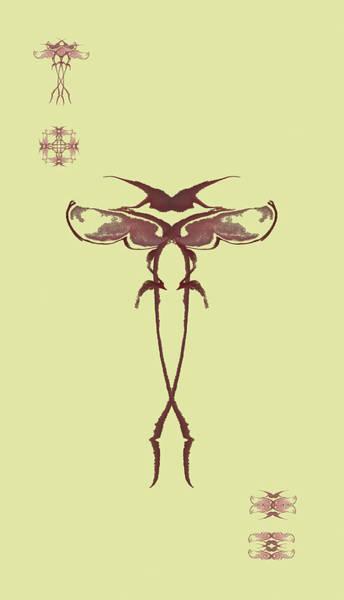 Zen Fly Specimen  Art Print