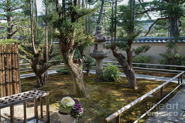 Photograph - Zen Garden, Kyoto Japan 5 by Perry Rodriguez