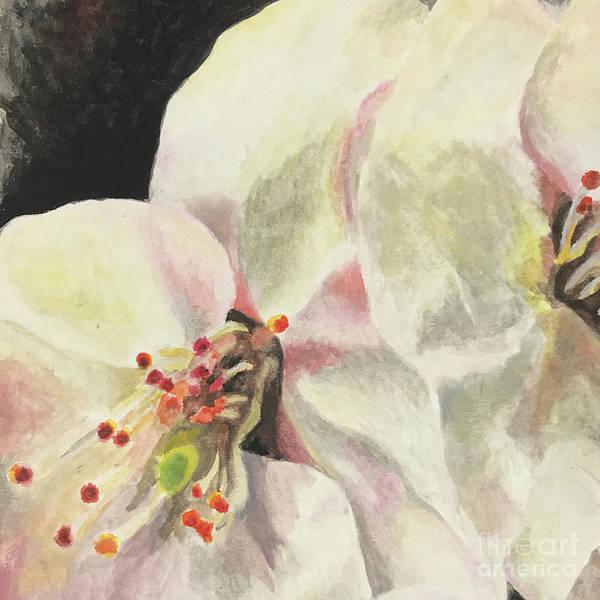 Samantha Painting - Zenpukuji River Sakura 1 by Samantha Horne