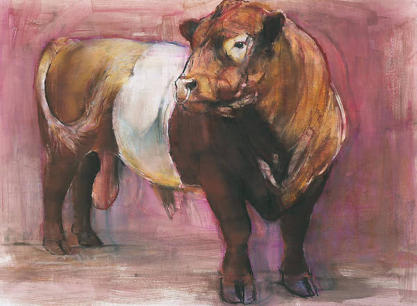 Galloway Wall Art - Painting - Zeus  Red Belted Galloway Bull by Mark Adlington
