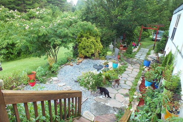 Photograph - Zing And Maya In The Garden by Duane McCullough