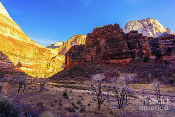 Wall Art - Photograph - Zion Around The Bend And The Great White Throne by Mike Reid