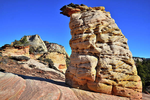 Photograph - Zion Beehive - Zion National Park by Ray Mathis