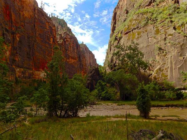 Photograph - Zion Canyon Narrows by Dan Miller