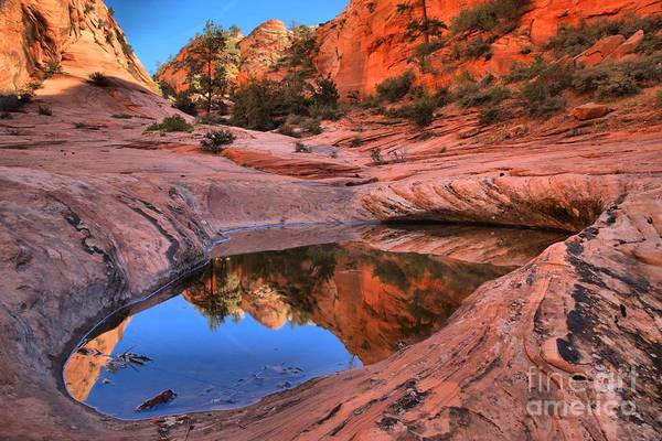 Photograph - Zion East Canyon Reflections by Adam Jewell
