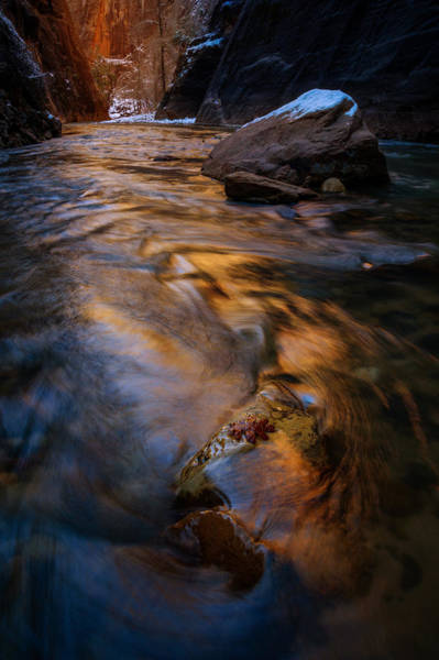 Photograph - Zion Gold by Dustin LeFevre