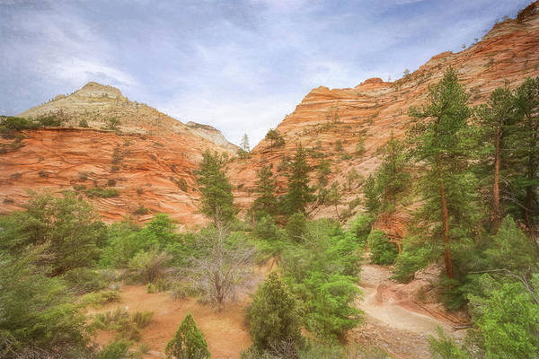 Photograph - Zion Impressions by John M Bailey
