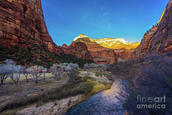 Wall Art - Photograph - Zion Landscape Towards The White Thone by Mike Reid