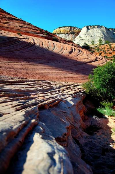 Photograph - Zion Leading Lines by Jerry Sodorff