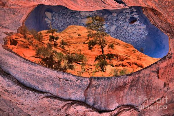 Photograph - Zion Many Pools Reflections by Adam Jewell