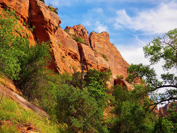 Photograph - Zion National Park 1 by Penny Lisowski