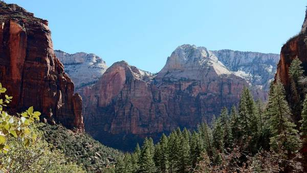 Photograph - Zion National Park - 3 by Christy Pooschke