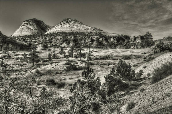 Photograph - Zion National Park Along Rt 9 by Roger Passman