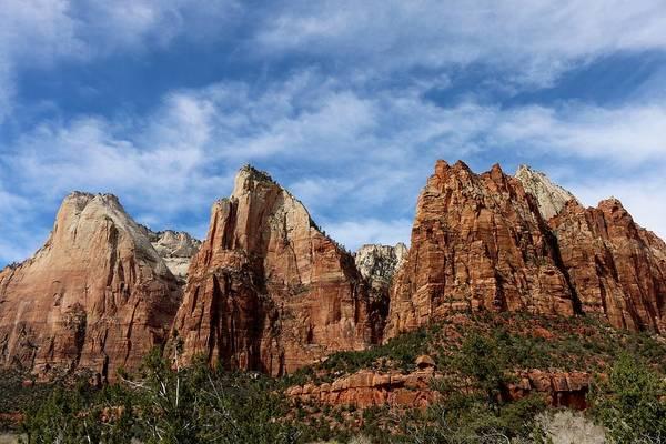 Photograph - Zion National Park  by Christy Pooschke