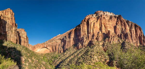 Photograph - Zion National Park Panorama by James BO Insogna
