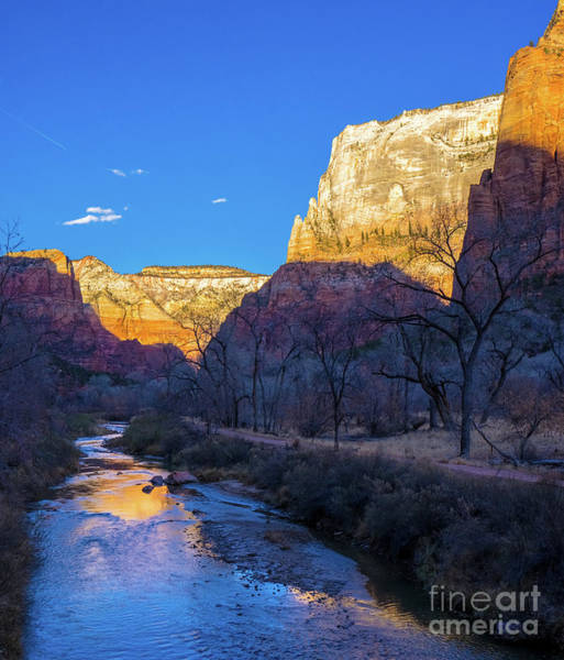 Wall Art - Photograph - Zion National Park Peaks Reflected by Mike Reid