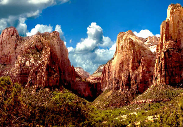 Painting - Zion National Park Utah by Bob and Nadine Johnston
