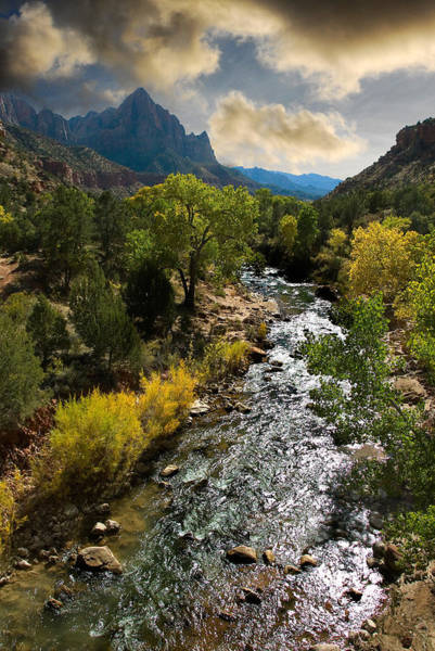 Photograph - Zion River by Harry Spitz