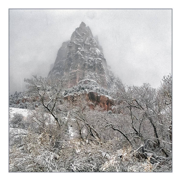 Wall Art - Photograph - Zion Snowstorm by Robert Fawcett