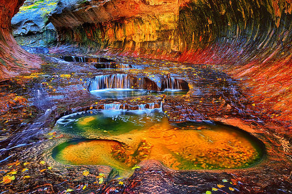 Photograph - Zion Subway Falls by Greg Norrell