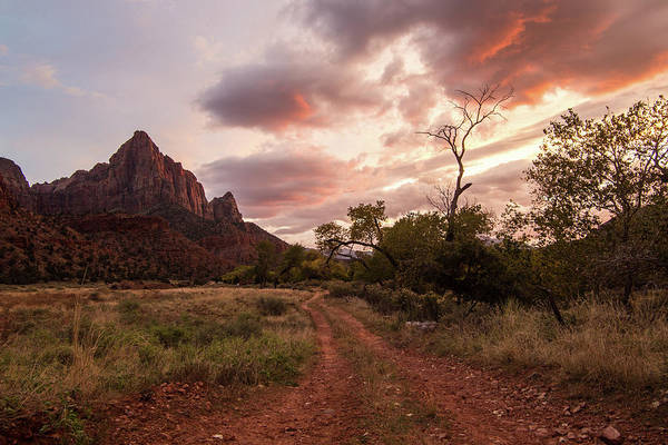 Photograph - Zion Sunset by Wesley Aston