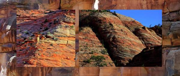 Photograph - Zion Wall Collage by Jerry Sodorff