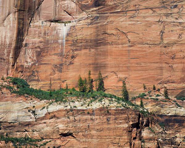 Wall Art - Photograph - Zion Wall by Joseph Smith
