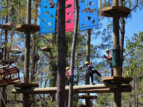 Photograph - Zip Line Attraction by Cynthia Guinn